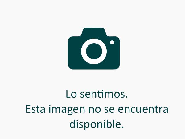 foto_ingenieros